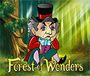 Forest of Wonder